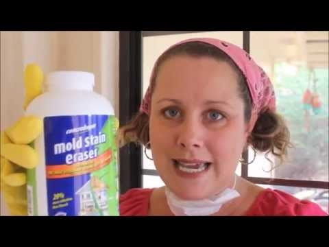 Using Concrobium Mold Control in My Enclosed Porch with Mold on Walls