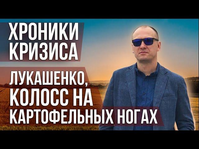 Хроники кризиса: Лукашенко, колосс на картофельных ногах.