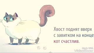 Обозначение кота ....