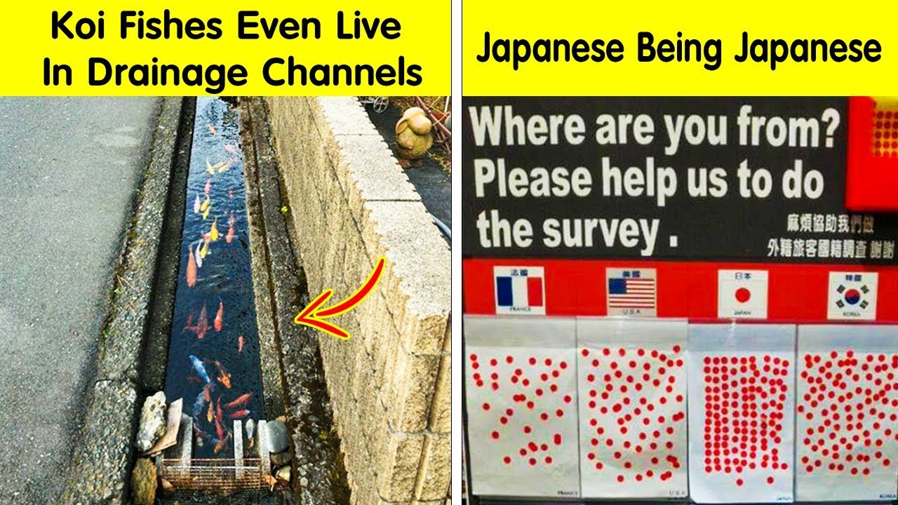photos-that-prove-japan-is-not-like-any-other-country