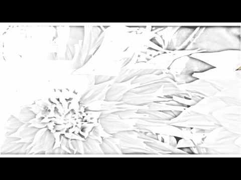 Auto Draw 2: Colorful Dahlias