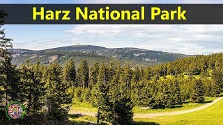 Best Tourist Attractions Places To Travel In Germany | Harz National ParkDestination Spot