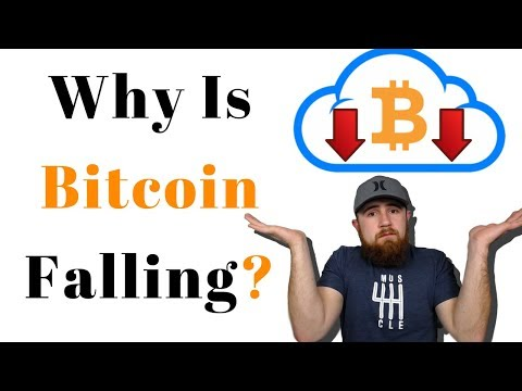 Why Is Bitcoin Falling || Should I Sell My Crypto?!?!