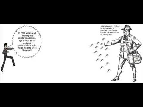 Erradicación de enfermedades por Williams Gorgas