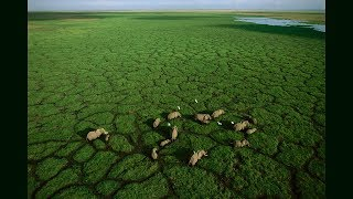 Photos of Africa, taken from a flying lawn chair | George Steinmetz
