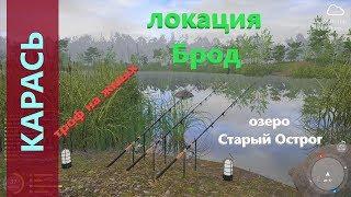 Русская рыбалка 4 озеро Старый Острог Брод жмых карась