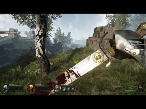 Warhammer: End Times - Vermintide. Stromdorf DLC 1st NM run 1/5 |