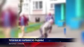 ТЕПАЧКА ВО КАРБИНСКО РАДАЊЕ 22 01 2019