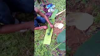 How to cook rice when you tired of carrying pan in the jungle