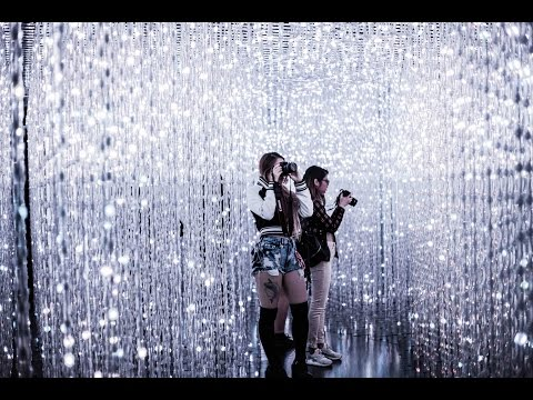 A day at the Light Exhibit- teamLab at the Pace Gallery