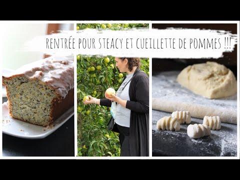 vlog-du-2-septembre-:-rentrée-pour-steacy,-gateau-citron-pavot-et-courgette,-gnocchis-maison