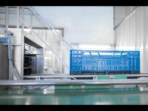 Successstory Euro Pool System CimPro