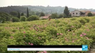 Grasse, la ville aux mille parfums