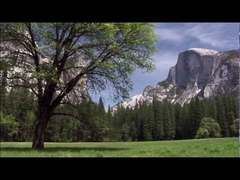 Yosemite Valley Tram Tour HD
