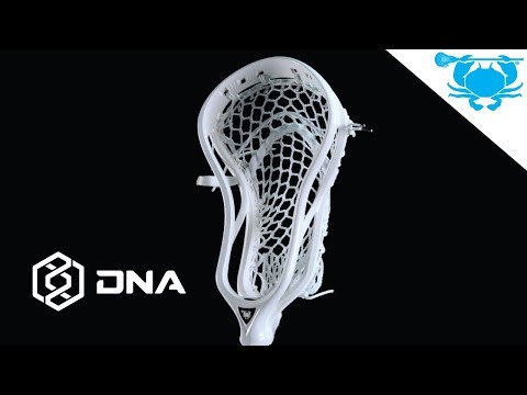 Inside The Product: DNA