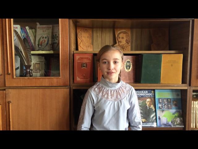 Изображение предпросмотра прочтения – ЕленаМедведева читает произведение «Осеннее чувство» В.Я.Брюсова