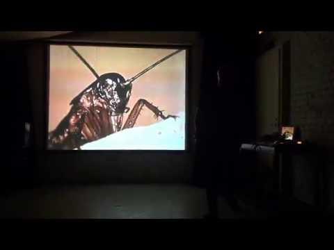 Dave Phillips - Sound Museum, St. Petersburg 7.10.16