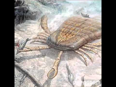 Paleozoic Era Paleozoikum YouTube