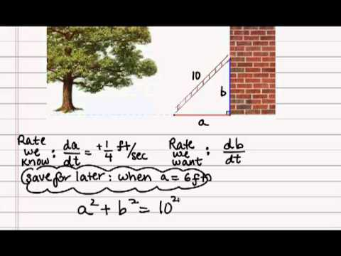 Calculus - Related Rates - Ladder Sliding - YouTube