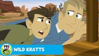 Wild Kratts: Gila Monster Under the Porch thumbnail