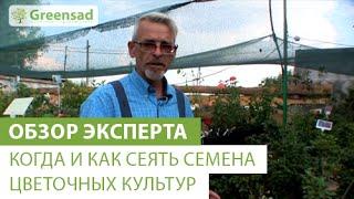 Когда и как сеять семена цветочных культур(В этом видео наш эксперт расскажет вам о том, когда и как правильно высаживать семена цветочных культур...., 2014-12-22T17:35:37.000Z)
