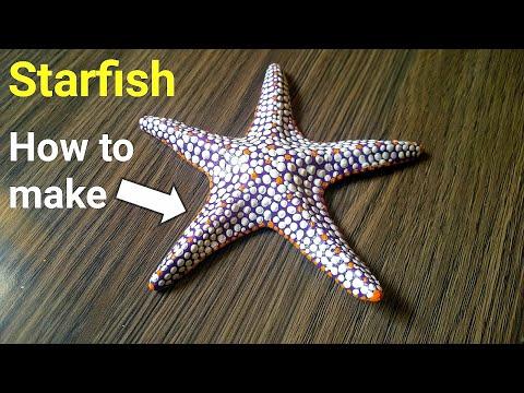 How To Make Starfish Using Clay   Fish Diy   Beautiful Starfish Craft