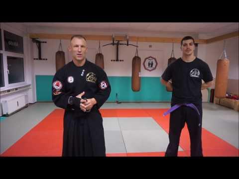 Kurzes Dankeschön. 1 Clip 2 Systeme - RSF meets Aikijitsu