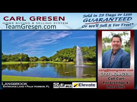 Top One Selling Agent inLansbrook (Palm Harbor FL 34685)