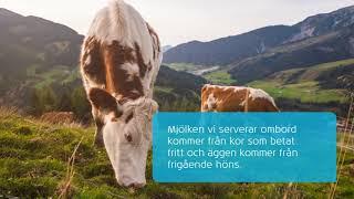 KLM: Äta i luften – håller det?