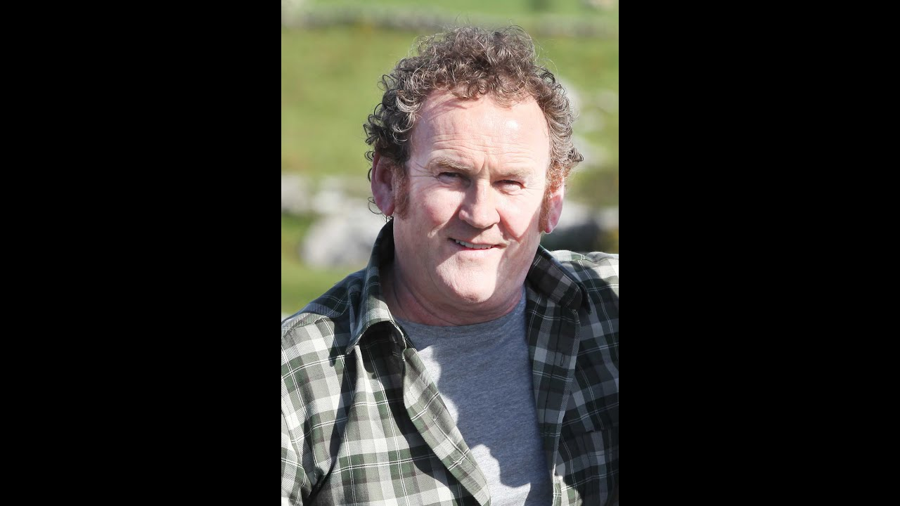 colm meaney minion