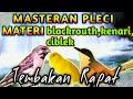 Masteran Pleci Tembakan Rapat Isian Blackrouth Kenari Dan Ciblek Mempercepat Pleci Buka Paruh  Mp3 - Mp4 Download