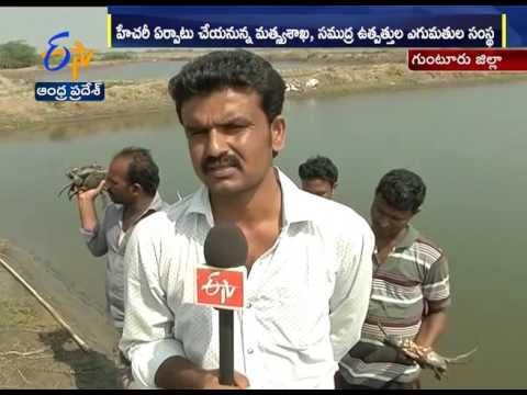 Aqua Farmers Facing Problems In Guntur District