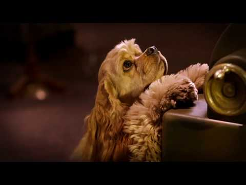 Lady And The Tramp Classic Disney Dogs Paw Their Way Into The Hearts Of All Ages