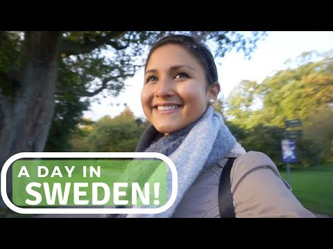 DAY TRIP TO SWEDEN! | LUND CATHEDRAL & A REAL CINNAMON BUN. | TRAVEL VLOG