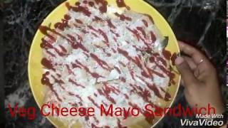 veg cheees mayo sandwich