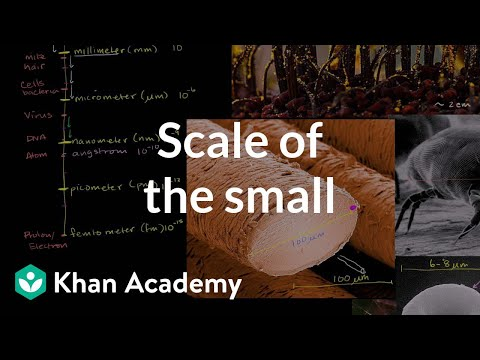 Scale of the small | Scale of the universe | Cosmology & Astronomy | Khan Academy