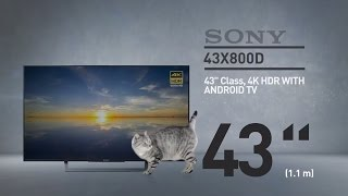 SONY 43X800D 4K HDR with Android TV XBR X800D Series // Full Specs Review