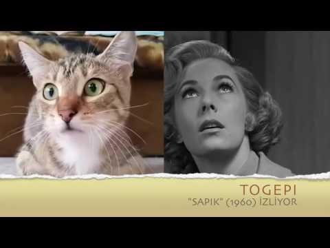 """TOGEPİ,  """"SAPIK"""" (1960)  İZLİYOR"""