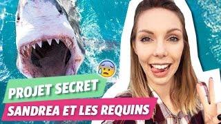 Sandrea plonge avec des requins blancs !