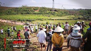 QUẢNG NGÃI: Nhức Nhối Tranh Chấp Đất Lâm Nghiệp, Đất Rừng Sản Xuất l ĐIỀU TRA