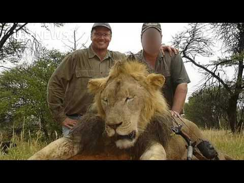 Professionals On The Hunt In South Africa