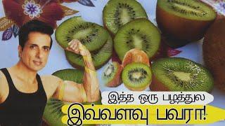 கிவி பழத்துல இவ்வளவு சக்தி இருக்கா! ஆச்சர்யமான கிவி பழ தகவல்கள் uṡes of kiwi fruit tamil kiwi pazham