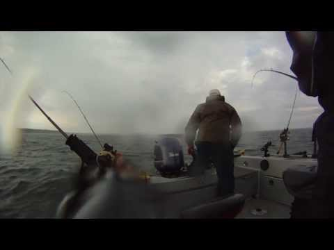 2013 Green Bay Walleye!! AIM and NWT TourCast 55