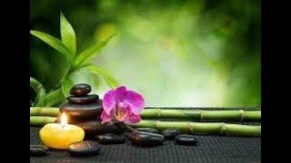 Secretos del Orden, limpieza de energia con feng shuy |mas vida
