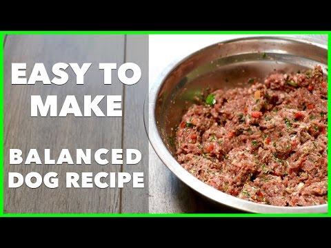 Easy homemade raw dog food recipe dog food secrets best dog food easy homemade raw dog food recipe dog food secrets best dog food 2017 forumfinder Gallery