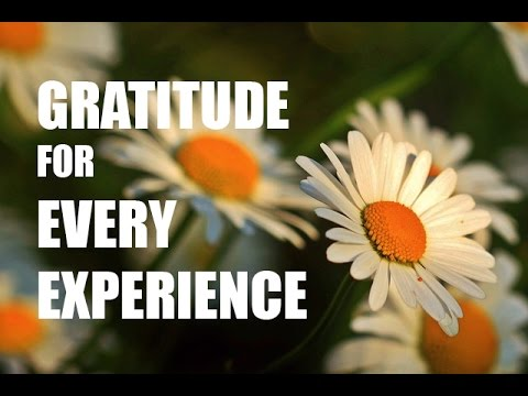 Dynamic Gratitude, Joy for Every Out of Body Experience    -   Talk by Allen Feldman