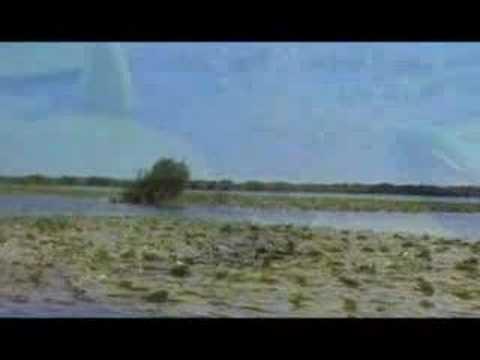borderline waters (trailer)