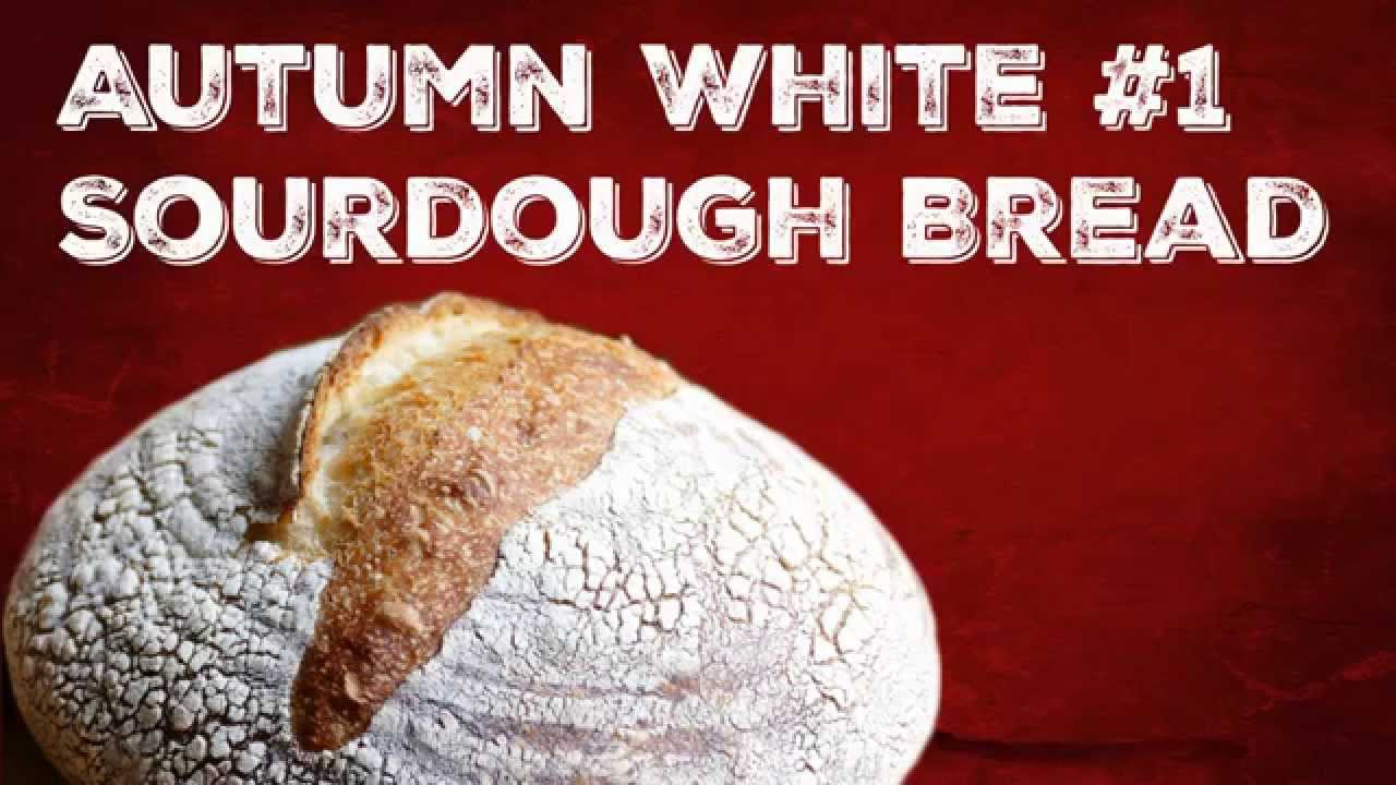 Video #1 - Autumn White Sourdough Bread Baking - Holey Bread - YouTube