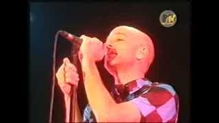 R.E.M. - She Just Wants To Be  (Live Köln 2001)
