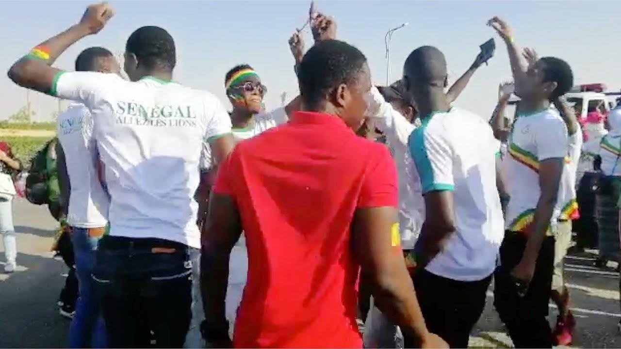 الوطن المصرية:توافد جماهير السنغال على الأتوبيسات المتجهة إلى الدفاع الجوي
